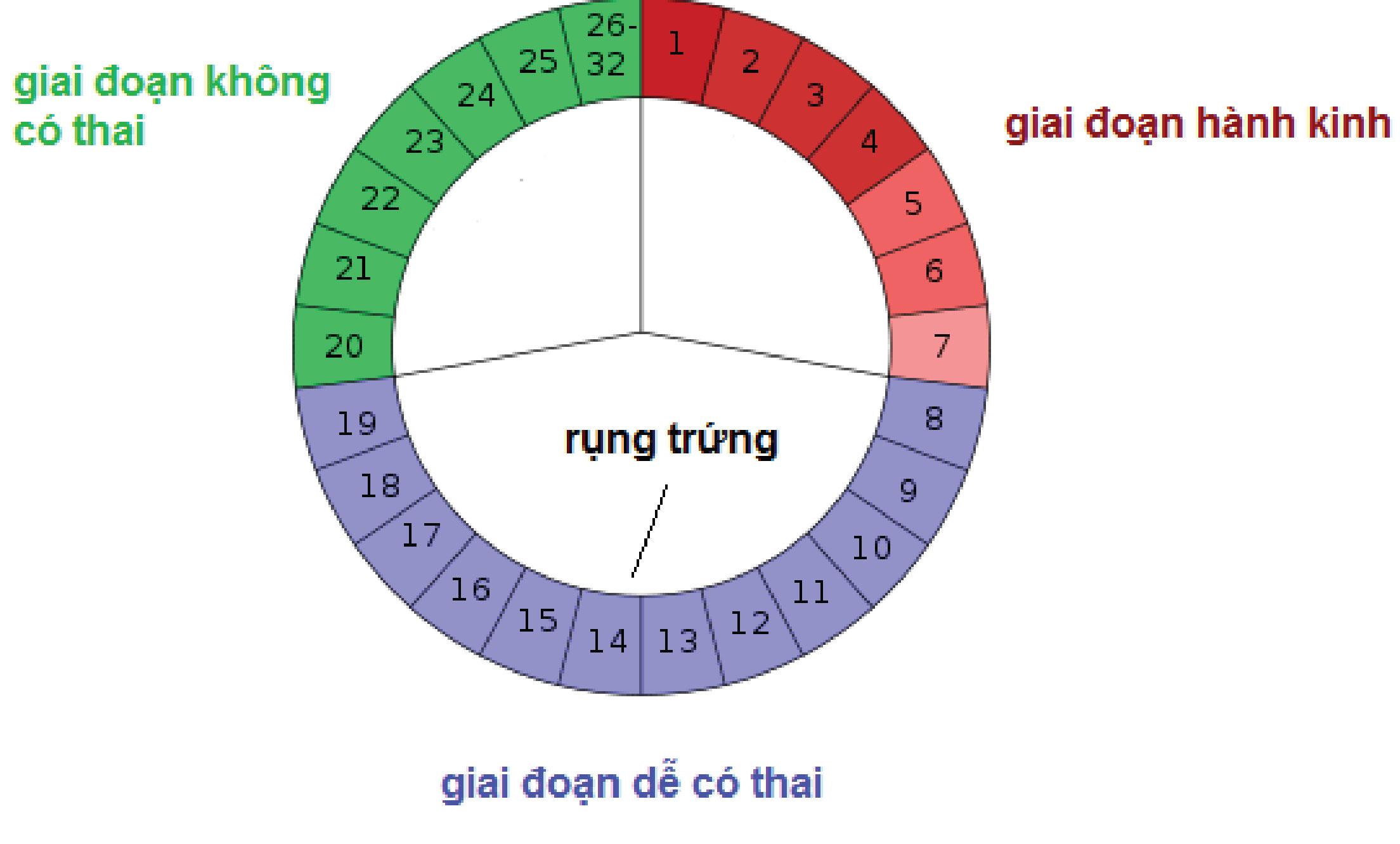 lam-nao-de-co-thai-nhanh-nhat1