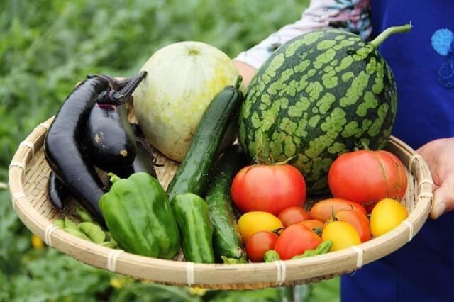 Nên ăn nhiều trái cây khi đang điều trị u xơ cổ tử cung