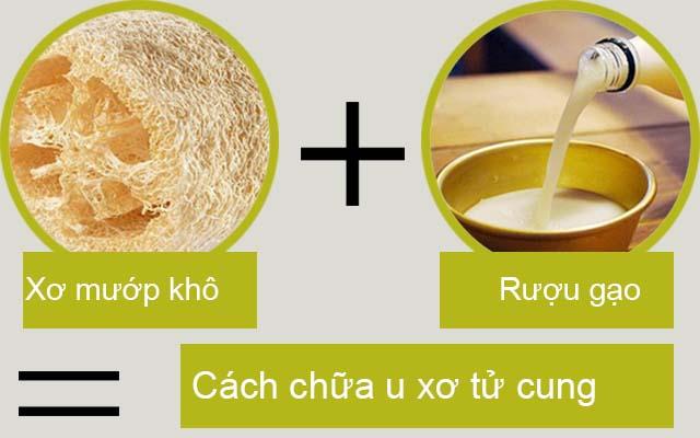 Bài thuốc chữa u xơ cổ tử cung từ xơ mướp và rượu gạo